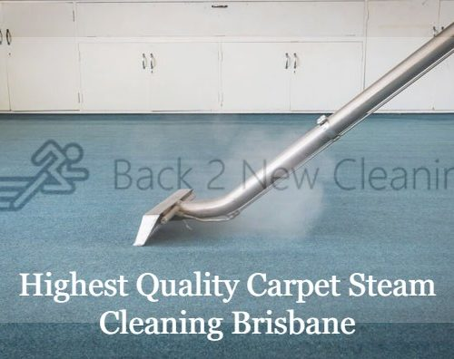 Carpet Steam Cleaning 1